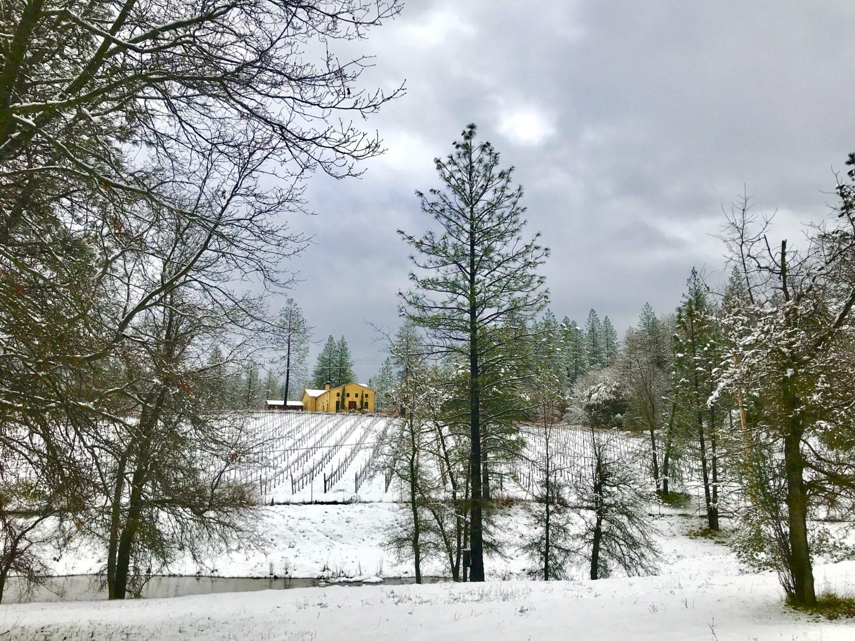 Snowy miraflores